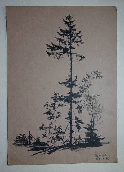 """Genovaitė Jacėnaitė. Piešinys """"Beržoras"""". 1956-06-30"""