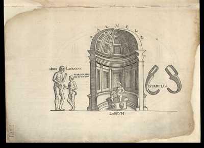 Prisci balnei confornicatio et forma / [M. Fabio Calvo]