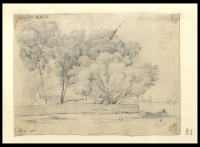Veduta di un giardino tebano, alberi e muro a secco , Tebe 2 agosto [1829]
