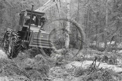 Keto 50-kuormainharvesteri ja Joutsa 50 X-puomi puunkorjuussa. Massey Ferguson-traktori.