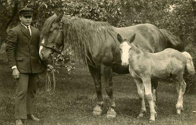 Vyro fotoportretas su arkliu ir kumeliuku