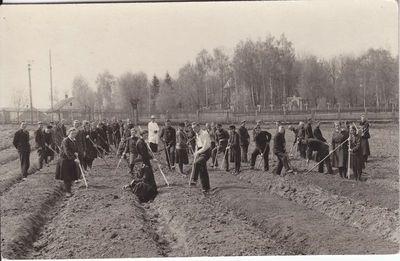 II - kurso studentai praktikos metu 1929 m.