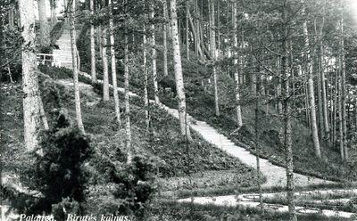 Palanga. Birutės kalnas