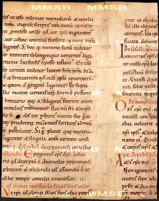 [Codex canonum]