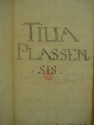 Tilia Plassensis