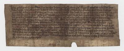 Vitnisburður, 4. ágúst 1482