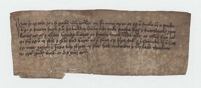 Vitnisburður, 19. júlí 1514