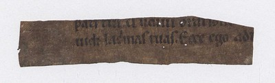 Breviarium, 1300-1399