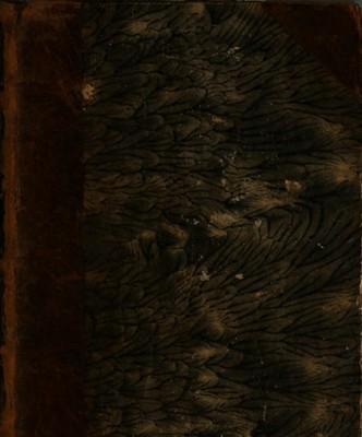 Eutropii Breviarium Historiae Romanae Cum Metaphrasi Graeca Paeanii, Et Notis Integris El. Vineti, Henr. Glareani, Tan. Et An. Fabri, Chr. Cellarii, Th. Hearnii, Chr. Aug. Heumanni Et Sig. Havercampi. Item Selectis Frid. Sylburgii. Accedit Rufus Festus Cum Notis Integris Frid. Sylburgii, Chr. Cellarii, Et Sig. Havercampi. Recensuit, suasque Adnotationes cum Indicibus copiosissimis Addidit Henricus Verheyk