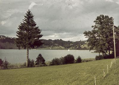 [Vista de un lago rodeado de árboles]