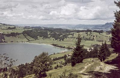[Vista de un lago con casas en la orilla rodeado de vegetación]