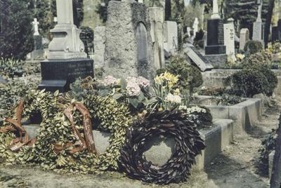 [Primer plano de coronas colocadas en la tumba de Marie Wunderlich]