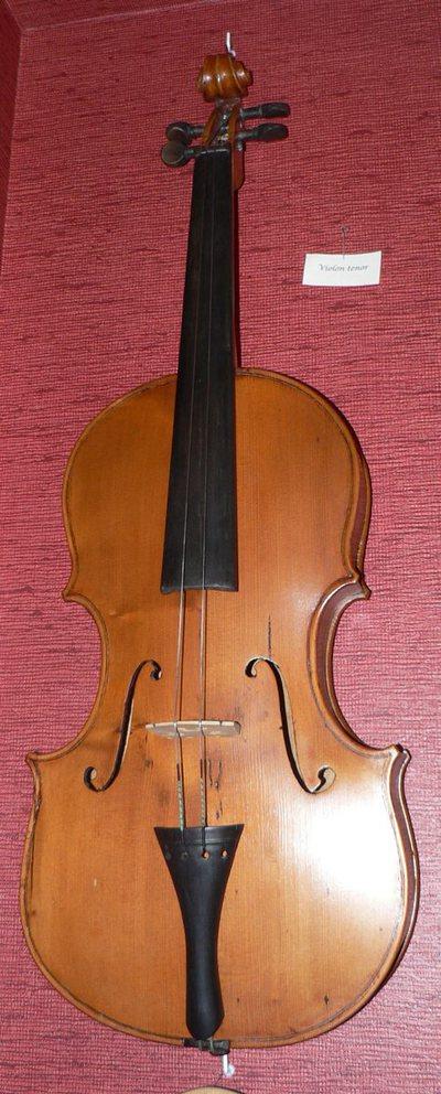 Violon ténor