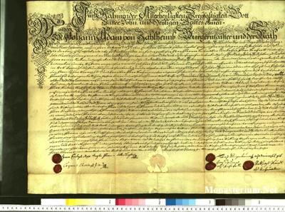 Urkunden 1738 V 31