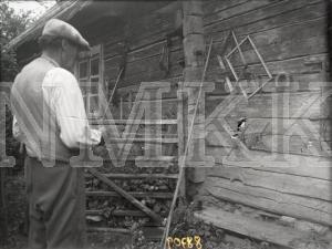 Fotonegatīvs. Striķu vīšana Talsu apriņķa Nogales pagasta Nojnieku mājās.