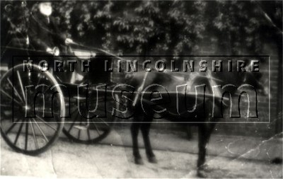 Mr John Jackson in a horse and trap in Messingham in 1915.
