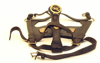 Harness, bridle
