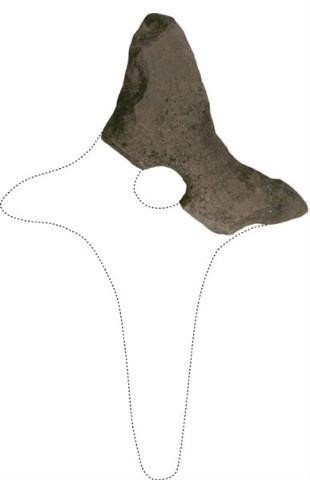 Korsforma køller frå Haram - ein spesiell gjenstand frå eldre steinalder.