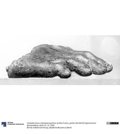 Vorderteil eines unterlebensgroßen rechten Fußes, großer Zeh fehlt (Fragment einer Bronzestatue)