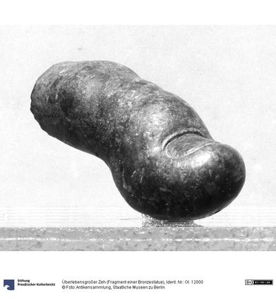 Überlebensgroßer Zeh (Fragment einer Bronzestatue)