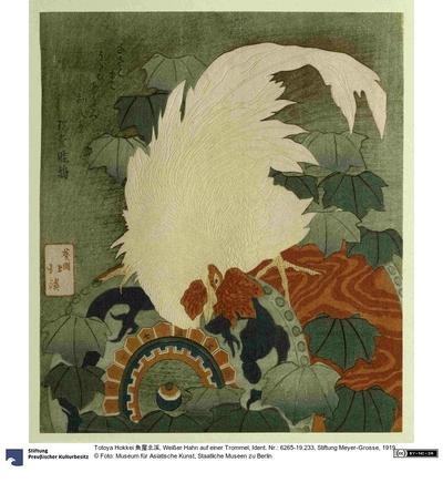 Weißer Hahn auf einer Trommel