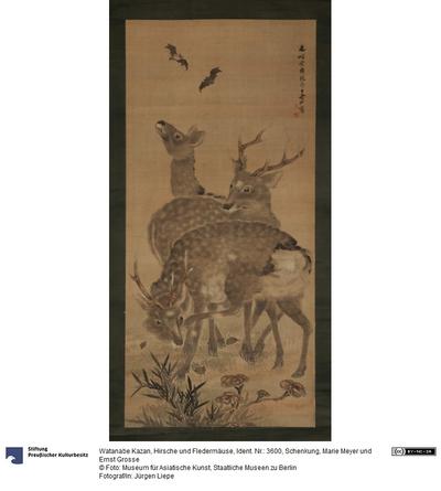 Hirsche und Fledermäuse