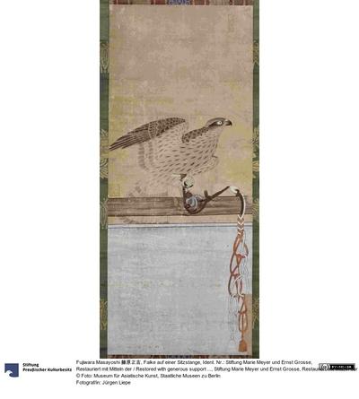 Falke auf einer Sitzstange