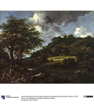 Hügelige Landschaft mit hohen Eichen