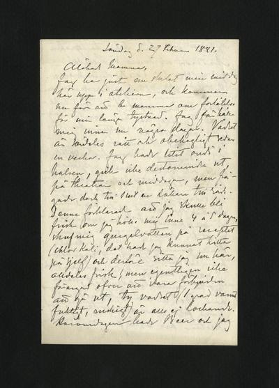 Söndag d. 27 Februari 1881.