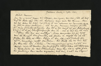 Gatschina Onsdag d. 2 febr. 1882