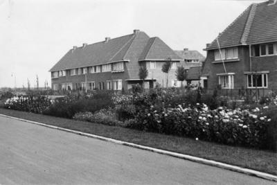 Poolsterstraat. plantsoen met daarachter woningen