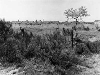 Van Riebeeckweg. bijenschans, gezien vanaf het westen