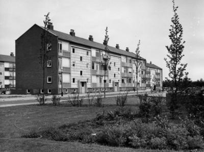 Sauerstraat. woningwetbouw met op de voorgrond het plantsoen van de Dr. Ir. C. Lelyschool