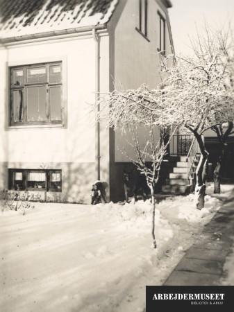 Havegangen er ryddet, men eller er det et meget vinterligt landskab der omgiver Laurits Hansen hus i Brønshøj