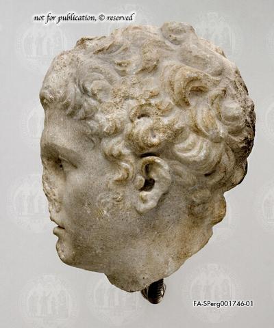Kopf eines Mannes