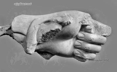 li. Handfragment
