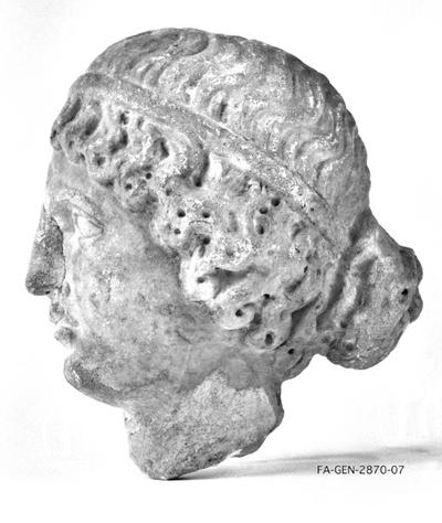 Linke Kopfhälfte einer Frau