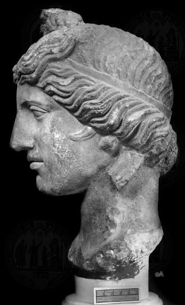 Apollonkopf