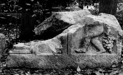 Fragment eines Jahreszeiten-Genien-Sarkophags (?)