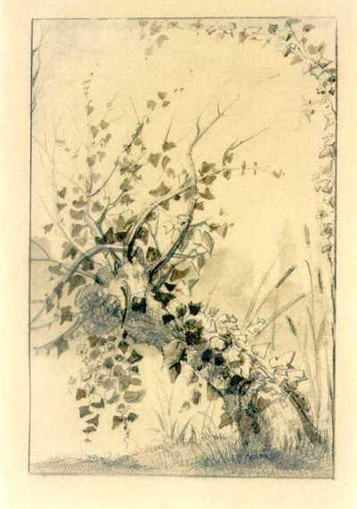 Manufacture de Céramiques Décoratives de Hasselt (1895-1954), ontwerptekening voor een tegelpaneel met klimop, s.d., potlood, waterverf op papier.