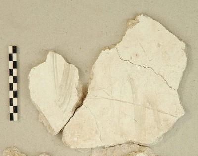 Fragmentaire muurschildering met paneeldecoratie en een pauw in pleister