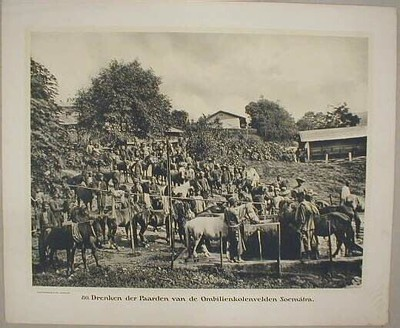 80. Drenken der Paarden van de Ombilienkolenvelden. Soemátra