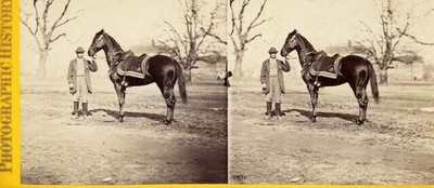 War views: Gen. Grant's favorite field horse Cincinnati.