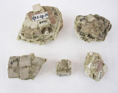 Vijf stukken mozaïek uit een tempel in Carthago.