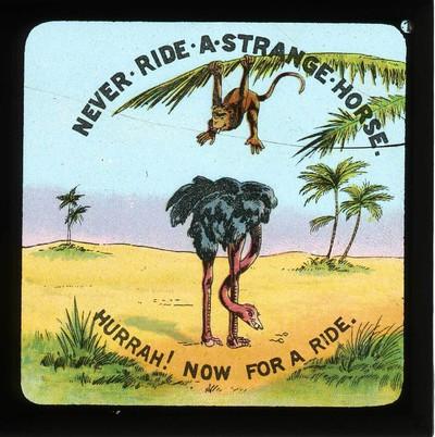 Never ride a strange horse