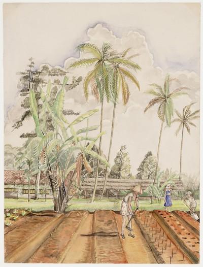 vrouwen werkend in de tuin