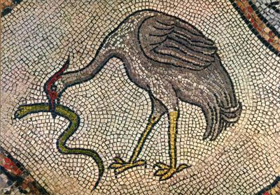 Venezia. Basilica di S. Marco. Pavimento a Mosaico XII sec. Cicogna con serpe. Altare del S.S