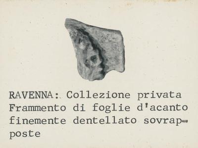 Ravenna: Collezione Privata. Frammento di foglie d'acanto finemente dentellato sovrapposte