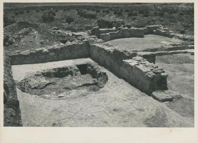 S. Croce Camarina (Contrada Pirrera).  L'aula sinistra della basilichetta con la grande fossa praticata sul mosaico (Foto Sopr. Ant. Siracusa; Neg. D; N. 14173)