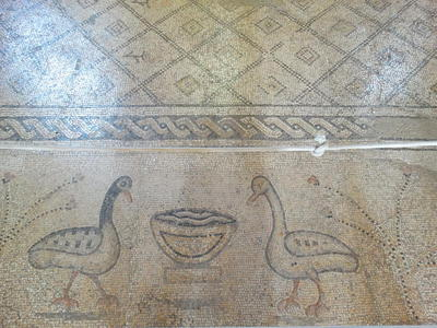 Tabgha, Church of the Multiplication. Floor mosaic depicting two birds facing